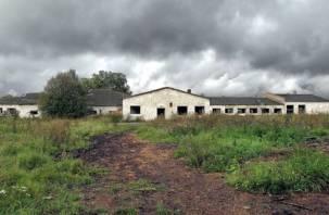 Смоленская область получит 80 млн рублей на поддержку села