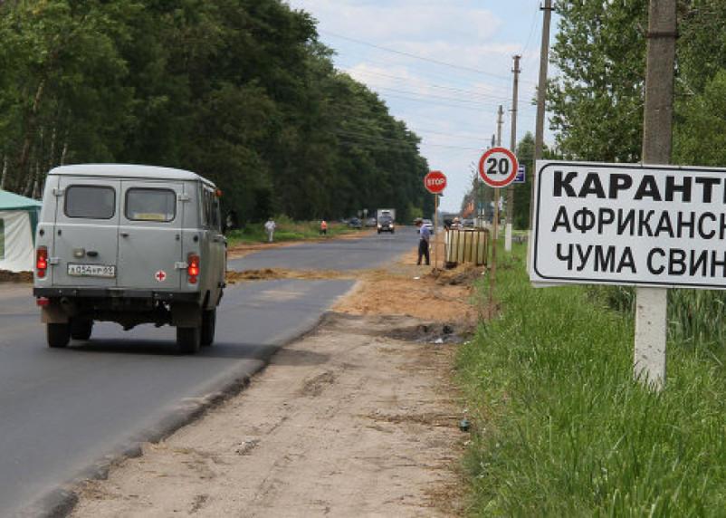 Смоленскую свинину запретили ввозить в Рязанскую область