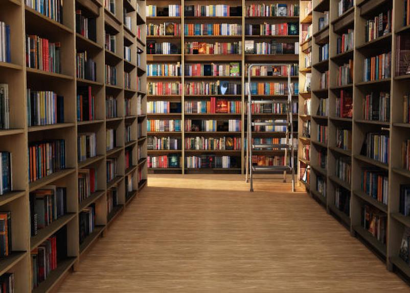В библиотеки Смоленска поступит почти две тысячи книг