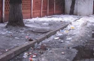 Роспотребнадзор напомнил о необходимости уборки Смоленска