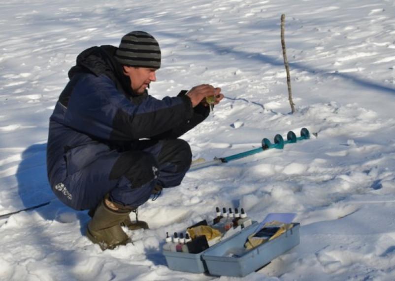 В озерах Смоленского Поозерья гибнет рыба