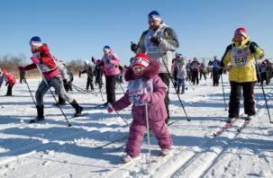 Программа Всероссийского Дня зимних видов спорта в Смоленске
