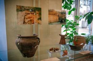 Открылась выставка «Археологические открытия в Смоленске. 2014 год»