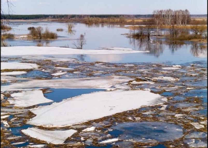 В Смоленской области готовятся к весеннему половодью