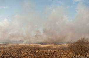 Пал сухой травы приобрел масштаб стихийного бедствия