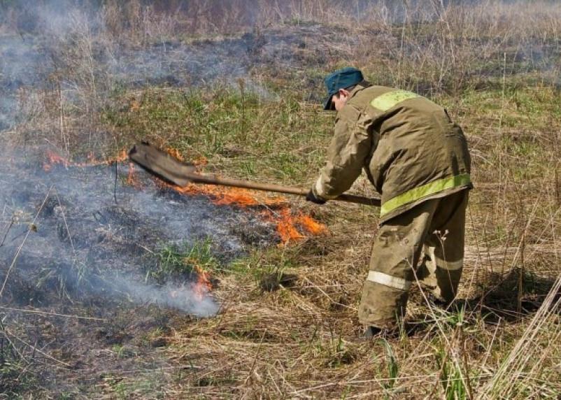 На Смоленщине поджег сухой травы привел к человеческим жертвам