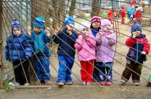 В Смоленской области учатся 900 украинских детей