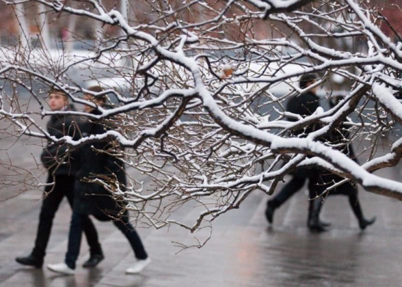 В Смоленскую область вернется зима