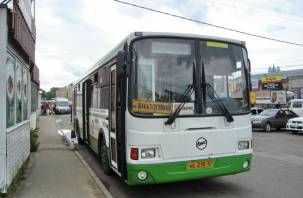 Количество автобусов на дачном маршруте №50 увеличится