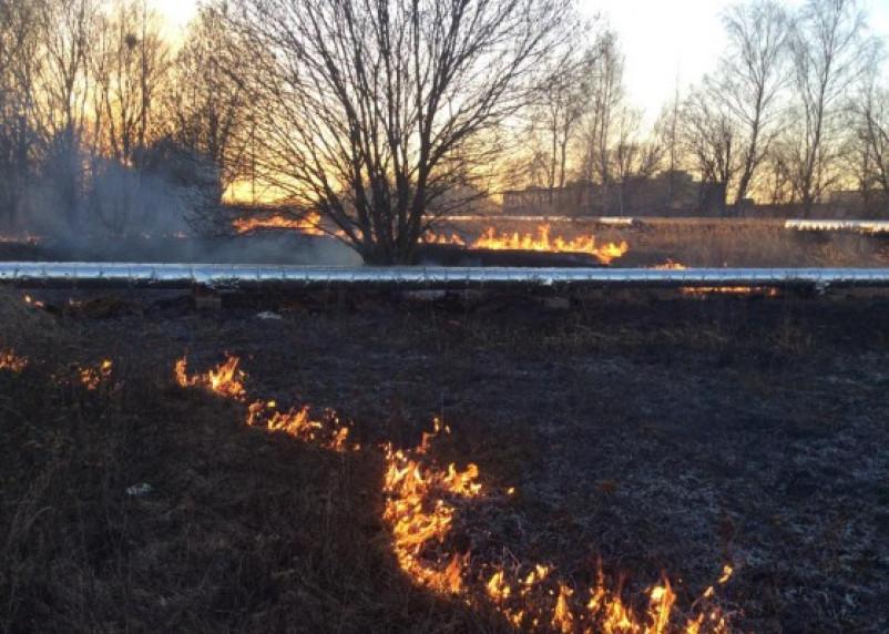 В Смоленске огонь подступает к аэродрому «Северный»