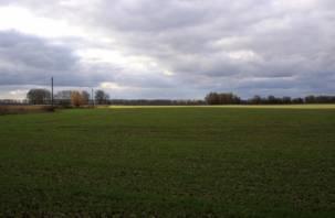 Смоленские сельскохозяйственные земли полны пестицидов