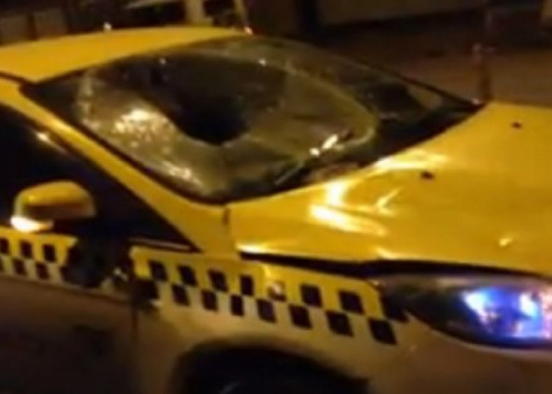 В Смоленске лось устроил ДТП с машиной такси