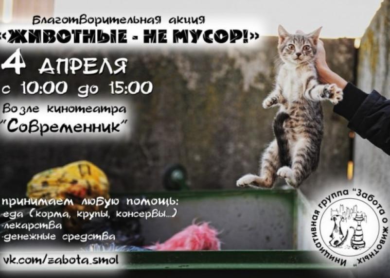 В Смоленске пройдет акция «Животные — не мусор»