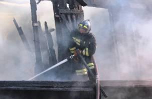 В Смоленской области проводится проверка по факту пожара, в котором погибли 7 человек