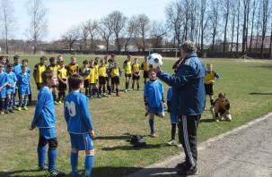 В Смоленской области состоялся детский футбольный турнир