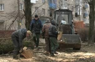 В Смоленске начали реконструкцию сквера на Ломоносова
