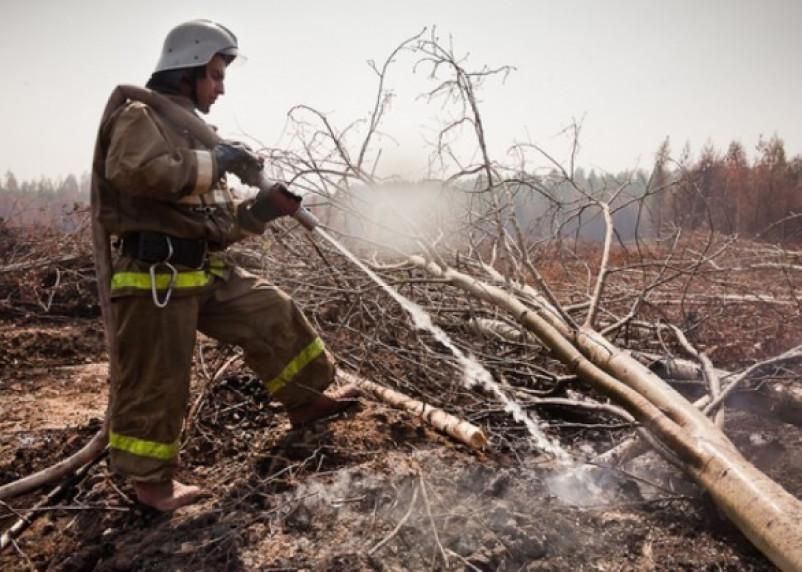Смоленская область вошла в список регионов риска торфяных пожаров