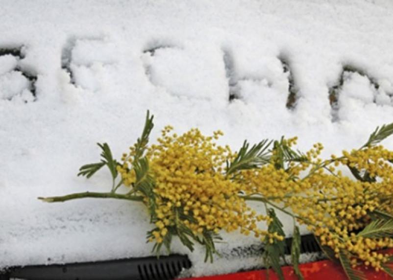Погода в Смоленске в середине апреля будет холодной