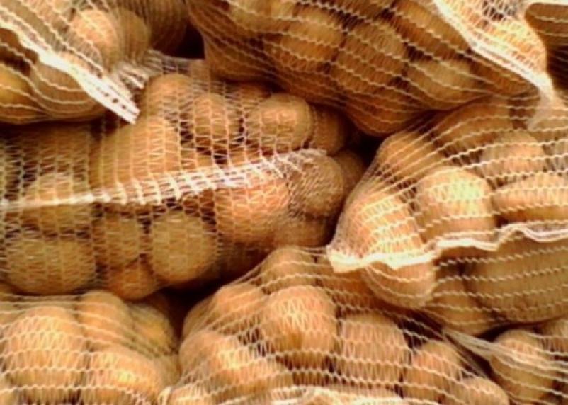 Картофель из Белоруссии не пустили в Смоленск. Будем есть из Египта