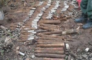 80 снарядов найдено на обочине дороги в Смоленской области