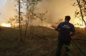 В лесах Смоленской области ожидается пожарная опасность