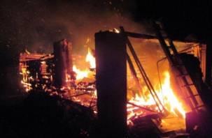 В Рославльском районе в огне погибло 67 животных