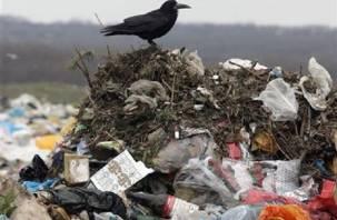 В Хиславичах незаконно утилизировали мусор