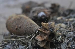 В Смоленской области обезвредили 74 снаряда времен Великой Отечественной войны