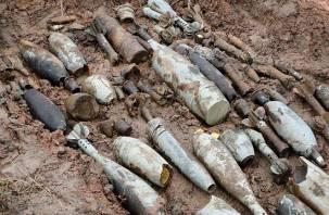 В деревне Дура Ярцевского района найдены сотни мин и снарядов
