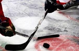 В Смоленске состоится турнир по хоккею