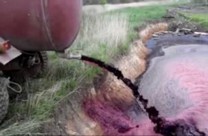 Перевели стрелки. Виновником слива крови с гагаринской скотобойни назначен тракторист
