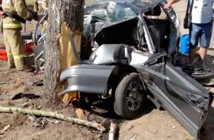 В Смоленской области детское автокресло спасло ребенка от гибели в ДТП