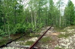 В Смоленской области продолжают воровать железнодорожные рельсы
