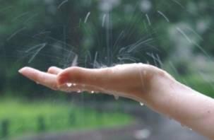 В первый день июля в Смоленске возможны дождь и гроза