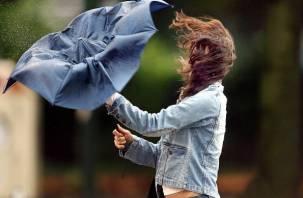 Смоленщину накроет сильный ветер