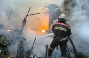 В Смоленской области стало больше пожаров и их жертв