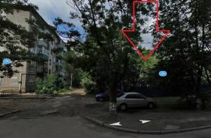 На улице Кирова спилят 27 деревьев