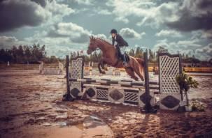 В Смоленской области состоится конное шоу