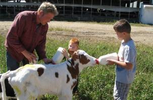 Семейные животноводческие фермы получат гранты на развитие