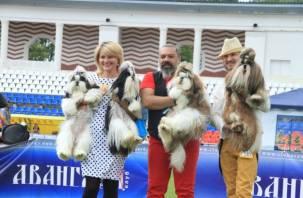 В Смоленске состоялась международная выставка собак. Фоторепортаж