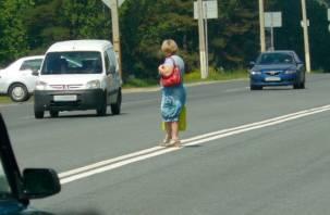 Смоленские пешеходы рискуют быть оштрафованными