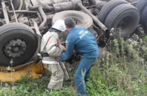 В Смоленской области грузовик с топливом упал в кювет