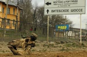 В Смоленской области упало производство мяса