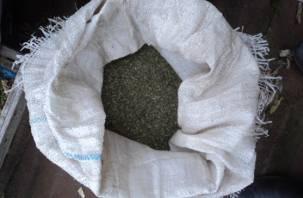 У смолянина в доме обнаружили 1,5 килограмма марихуаны