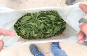 В Смоленской области уничтожены килограммы наркотиков