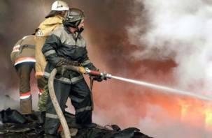 С начала года на Смоленщине в огне погибли 74 человека