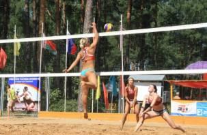 В Смоленске состоялся турнир по пляжному волейболу