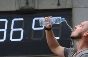 МЧС прогнозирует аномально жаркий понедельник