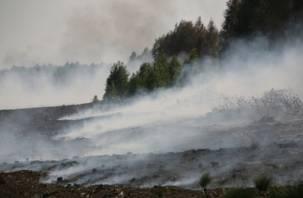 Стали известны причины смога над Смоленском