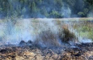 В Смоленской области зафиксированы три катастрофических пожара
